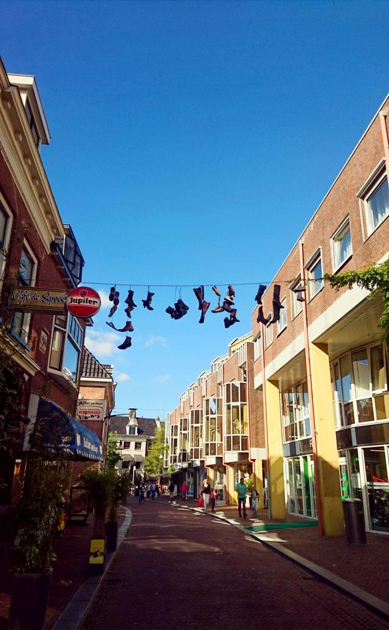 מה למדתי השבוע בהולנד – הרבה שאלות ושני סימנים של סתיו