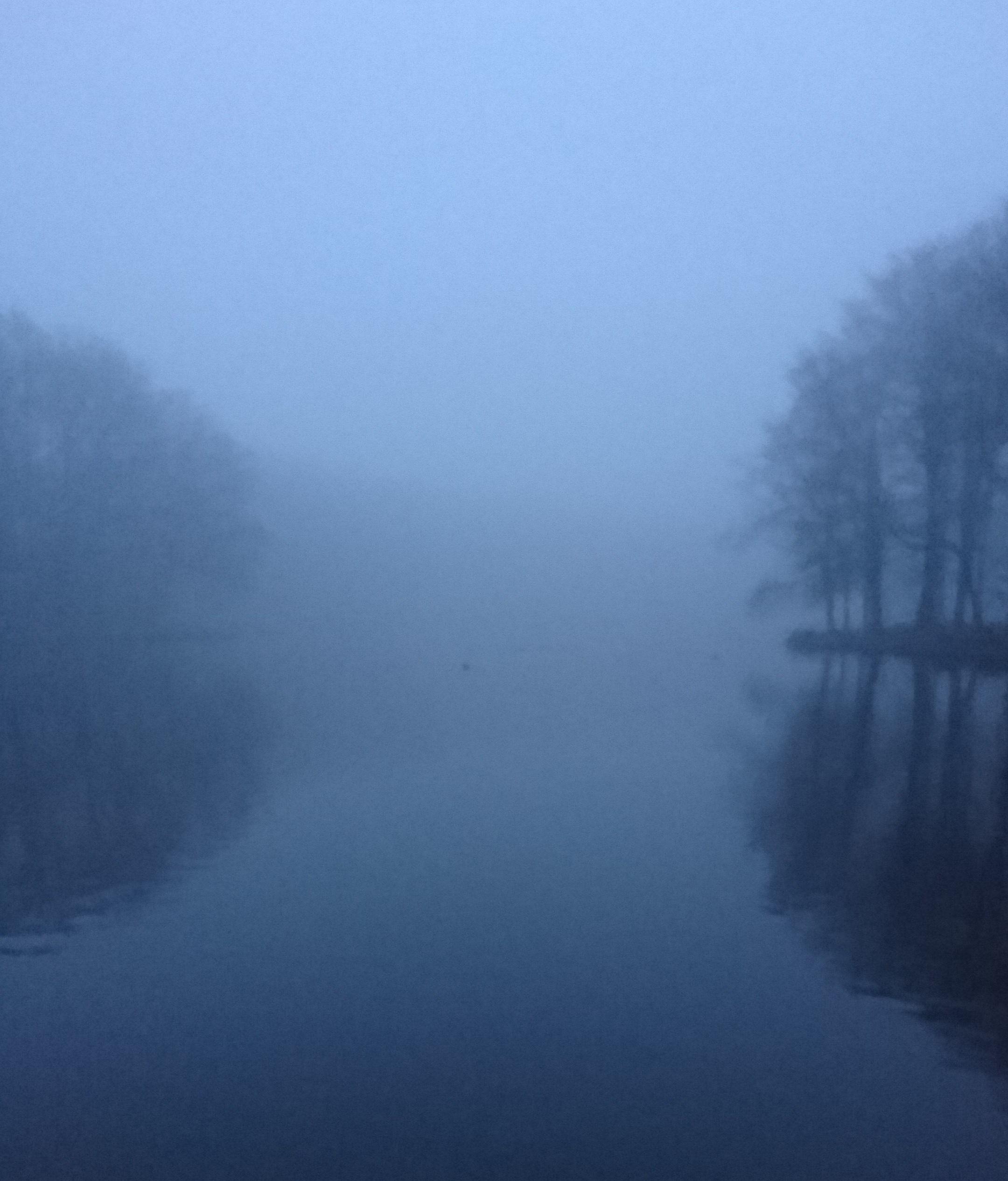 מה למדתי השבוע בהולנד- מילת השנה, אתיקת-רשת ופסנתר מעופף.