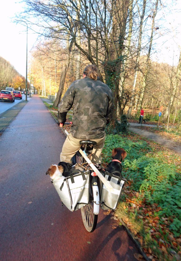 מה למדתי השבוע בהולנד – דחיינות, היאחזות ומעבר.