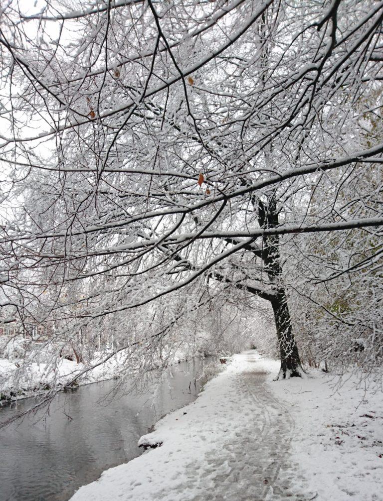 מה למדתי השבוע בהולנד – שלג ודירה להשכיר