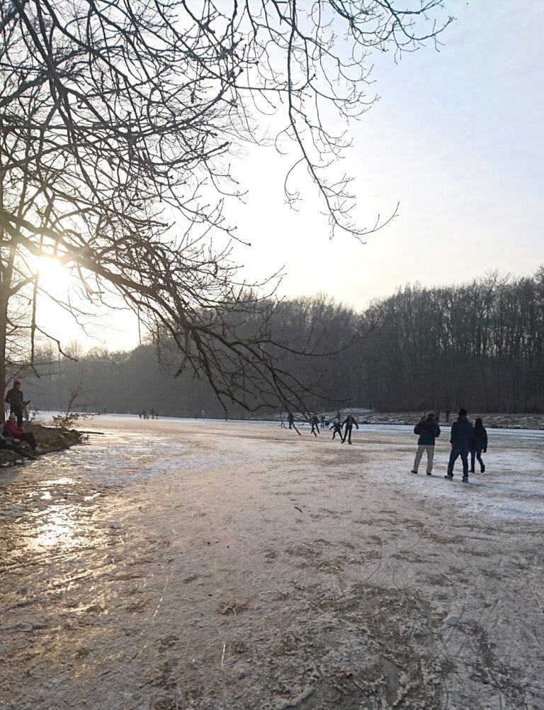 מה למדתי השבוע בהולנד – 200 ק״מ, קרח והרבה ספרים