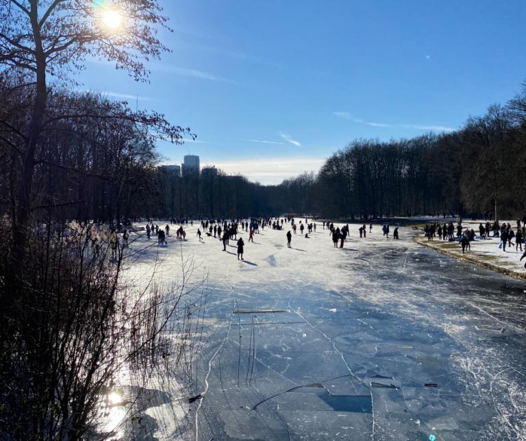 מה למדתי השבוע בהולנד – עז בבית, למידה מרחוק, דחיינות לילה ואובססיית קרח